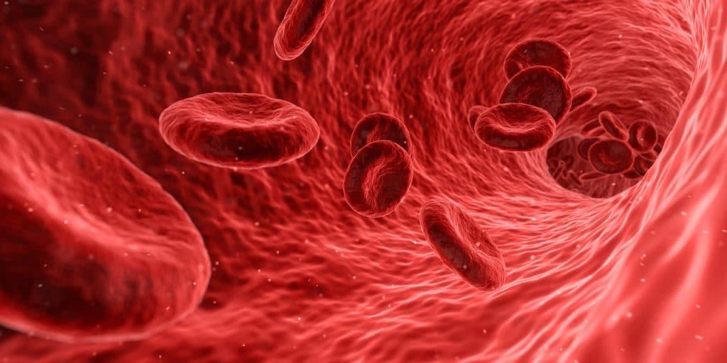 Los signos de envejecimiento transmitidos por la sangre