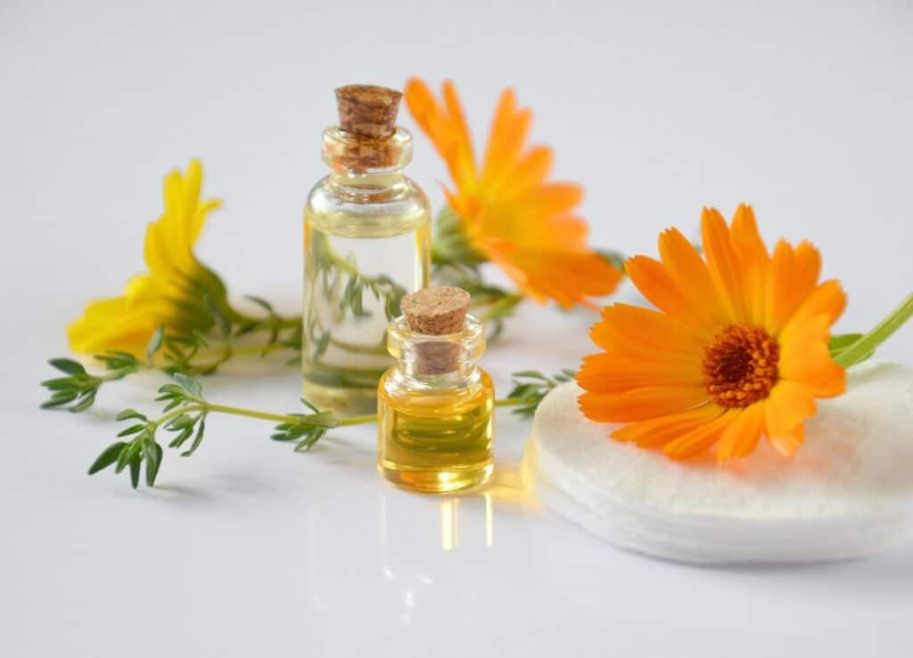 Ingredientes naturales para lucir la piel